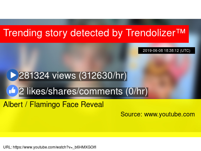 Flamingo Face Youtube